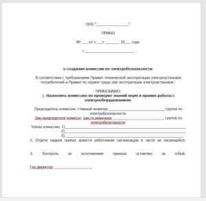 Образец приказа о создании комиссии по электробезопасности